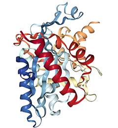 Potent_p300_CBP_Inhibitor_iP300w_Cat_7270.png