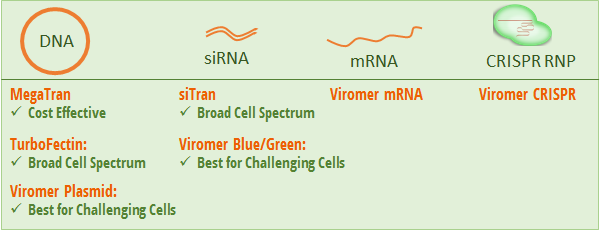 Transfection Reagent Selection Guide.png