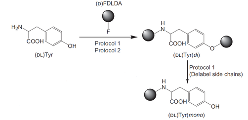 reaction diagram