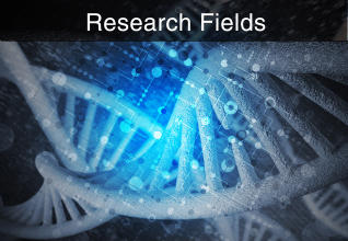 Research Fields