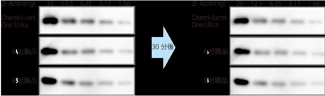 d005010_Ultra-seinoukakunin-1_syusei_20180405_2.png
